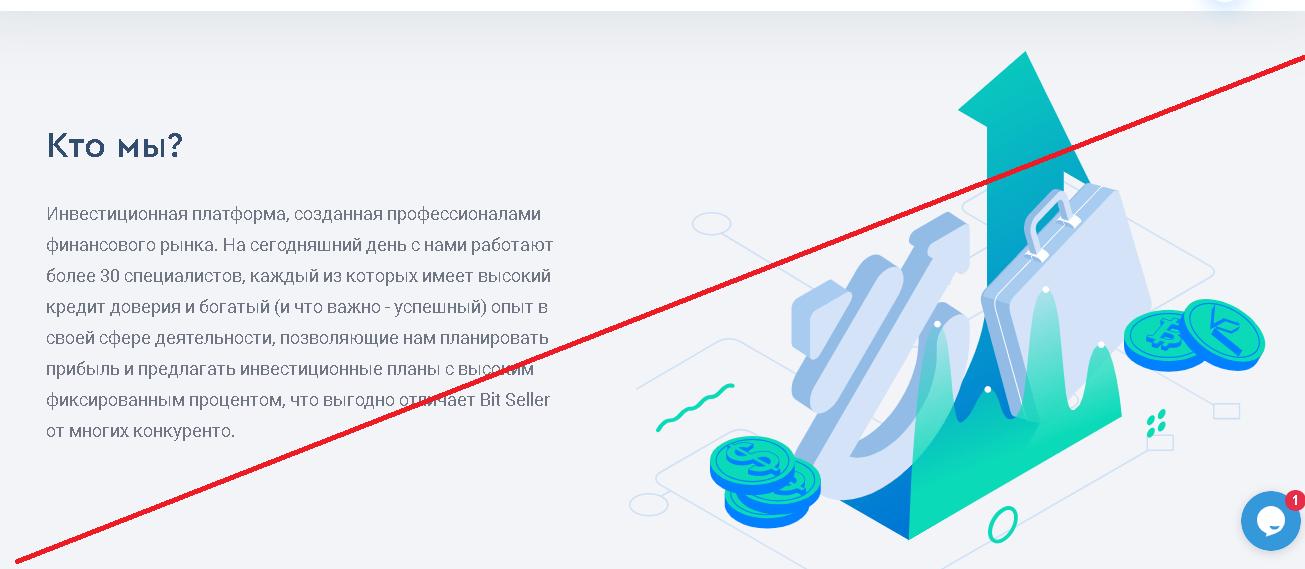 Bit Seller - Отзывы