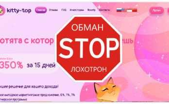 Kitty Top - Обзор