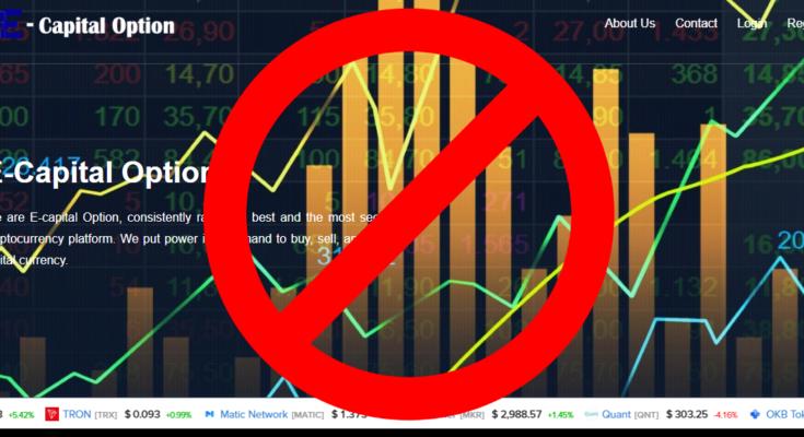 E-Capital Option официальный сайт