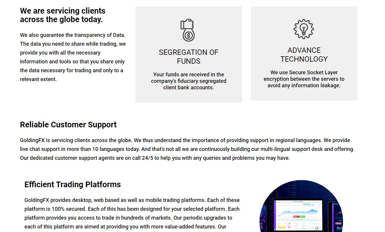 GoldingFX о компании